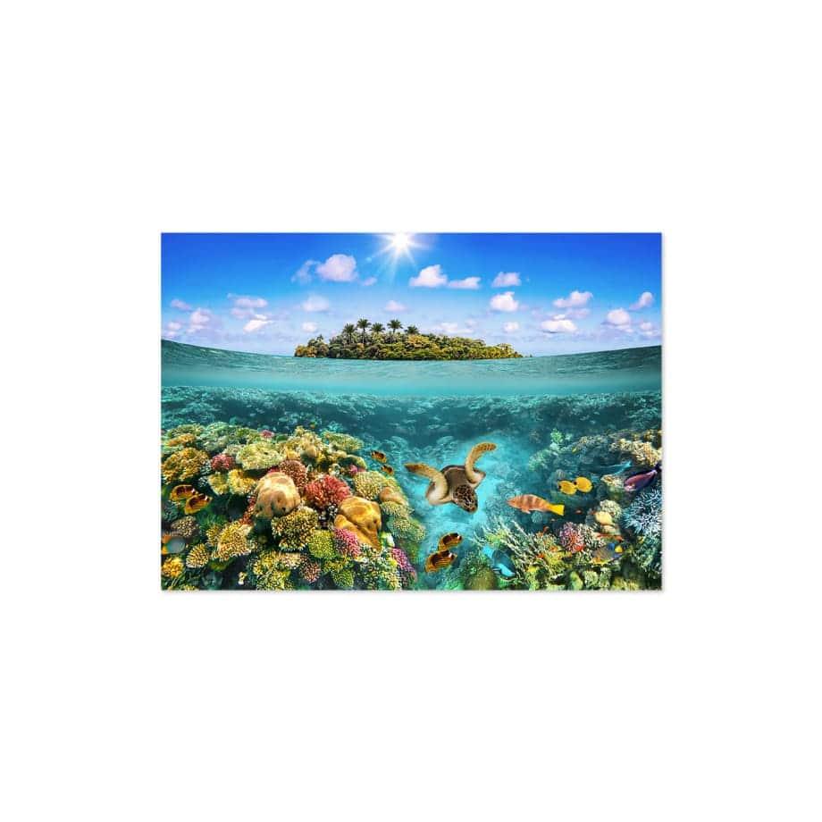 Cuadro arrecife marino