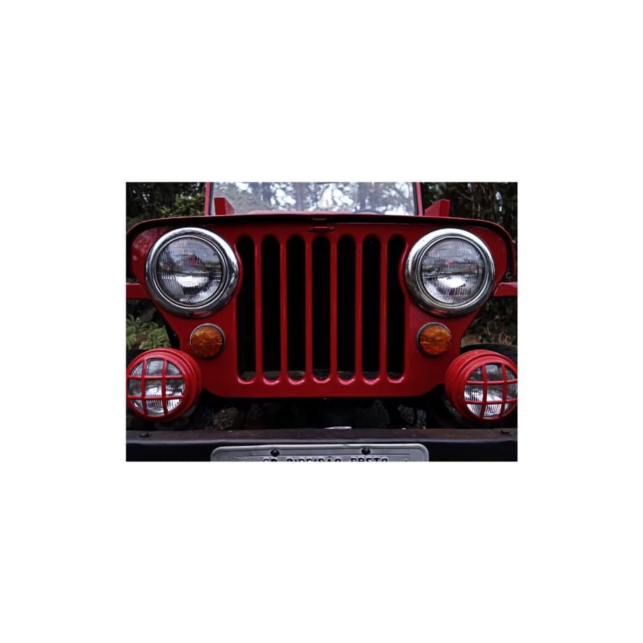 Cuadros decorativos de autos - Willys