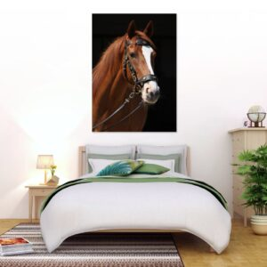 Cuadro caballo 1