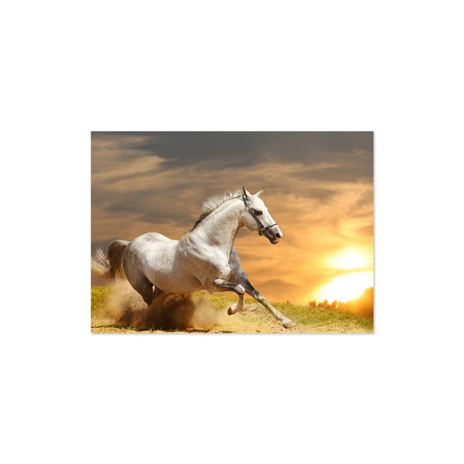 Cuadro caballo corriendo