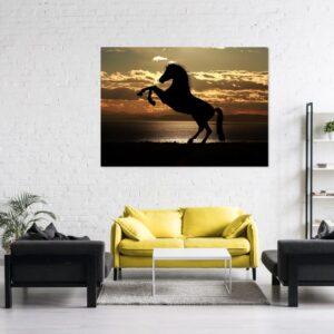 Cuadro caballo salvaje