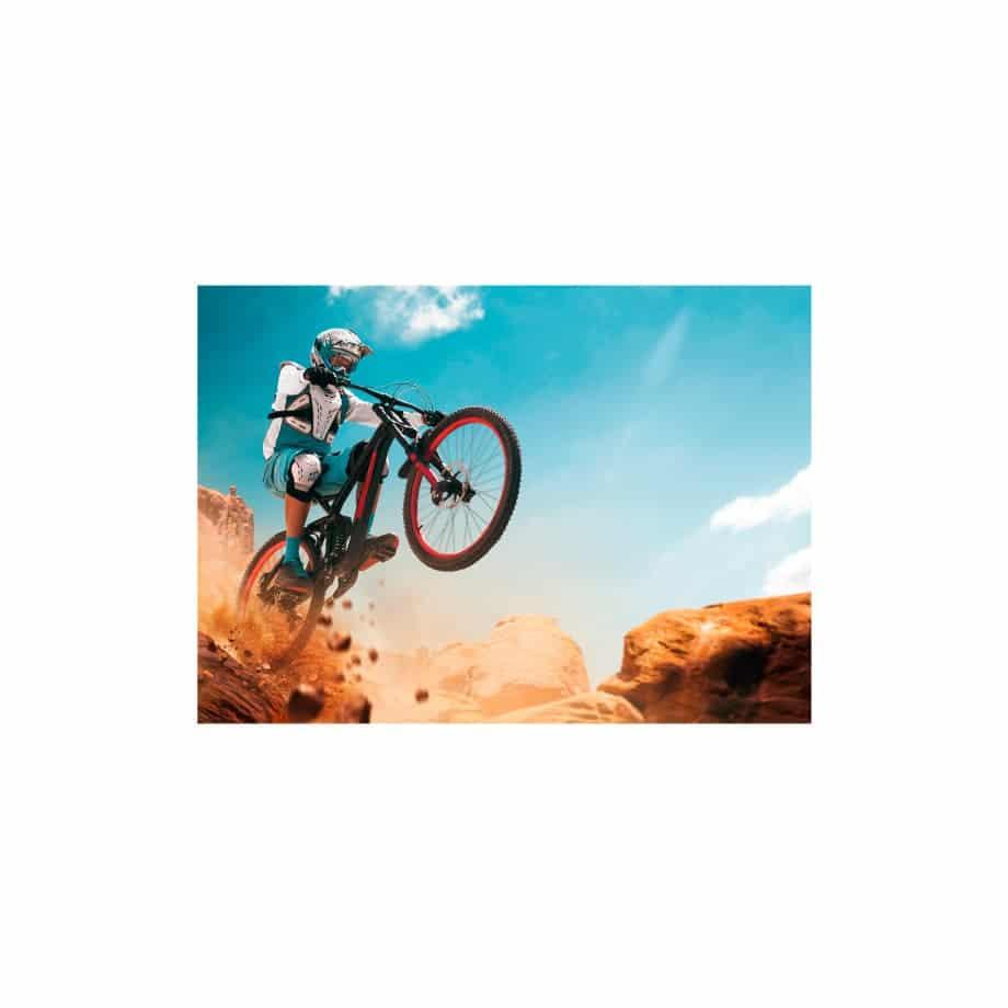 Cuadro ciclista saltando