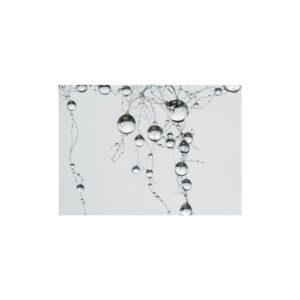 Cuadro gotas de agua