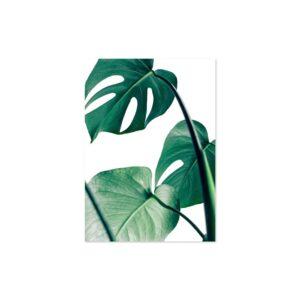 Cuadro hojas verdes 1