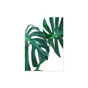 Cuadro hojas verdes 3