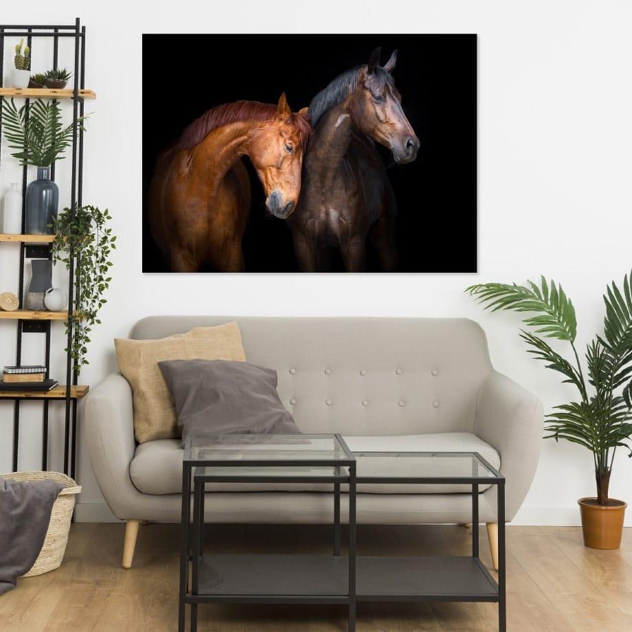 Cuadro pareja de caballos