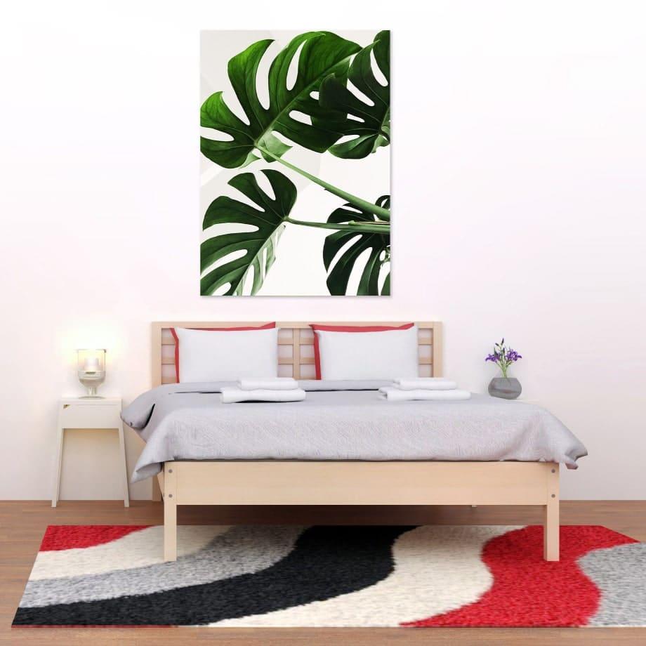 Cuadro planta minimalista
