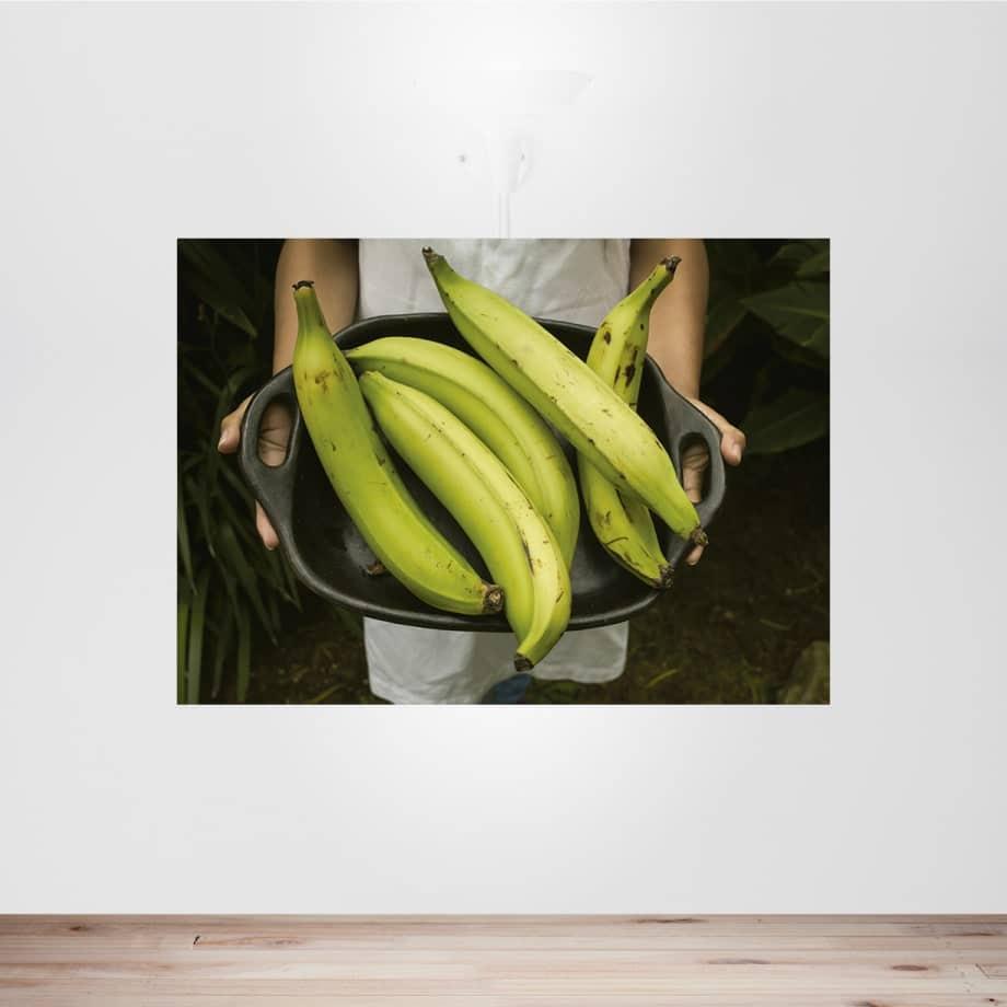 Cuadro plátanos para cocina