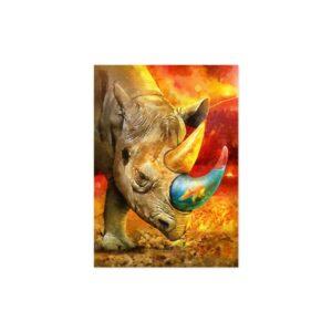 Cuadro rinoceronte colores