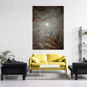 Cuadro sol y árboles