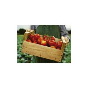 Cuadro tomates